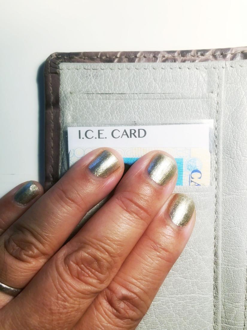 ICE Planner photo